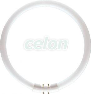 Körfénycső TL5 Circular 22W/840 2GX13 4000K Philips, Fényforrások, Fénycsövek, Kompakt körfénycsövek, Philips