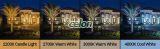 Proiector Led REFLECTOR 1x10 W Alb Rece Aparent 34114 - Globo Lighting, Corpuri de Iluminat, Proiectoare, reflectoare, Proiectoare cu Led, Globo Lighting